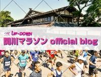 blog-link